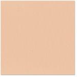 Bazzill - 12 x 12 Cardstock - Canvas Texture - Foxy