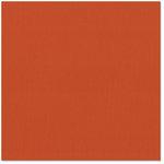 Bazzill - 12 x 12 Cardstock - Grasscloth Texture - Painted Desert