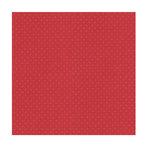 Bazzill Basics - 12 x 12 Dotted Swiss Cardstock - Phoenix