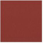Bazzill - 12 x 12 Cardstock - Classic Texture - Chili