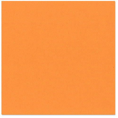 Bazzill - 12 x 12 Cardstock - Orange Peel Texture - Hazard