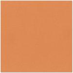 Bazzill Basics - 12 x 12 Cardstock - Canvas Texture - Aztec