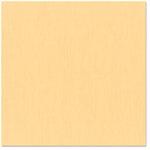 Bazzill Basics - 12 x 12 Cardstock - Canvas Texture - Sherbet, CLEARANCE