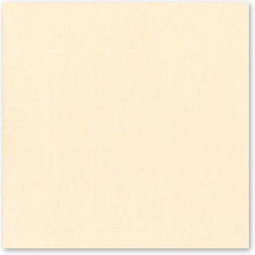 Bazzill Basics - 12 x 12 Cardstock - Canvas Texture - Savannah