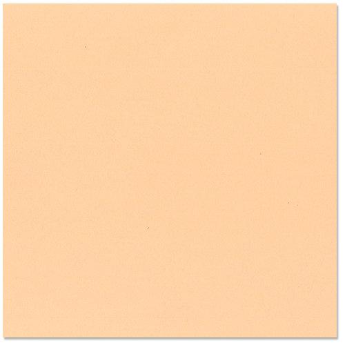 Bazzill - 12 x 12 Cardstock - Grasscloth Texture - Peach Glow