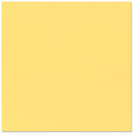 Bazzill - 12 x 12 Cardstock - Grasscloth Texture - Pollen
