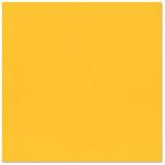 Bazzill - 12 x 12 Cardstock - Grasscloth Texture - Desert Marigold