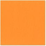 Bazzill - 12 x 12 Cardstock - Criss Cross Texture - Butterfly
