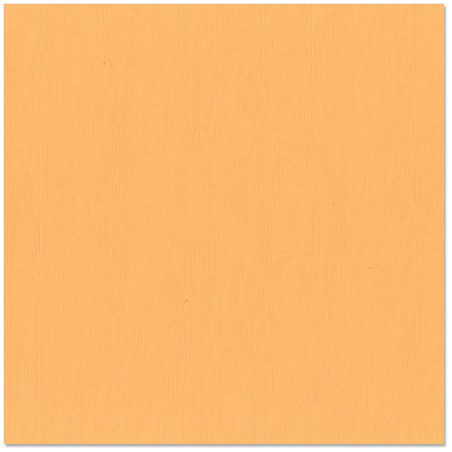 Bazzill - 12 x 12 Cardstock - Burlap Texture - Clementine