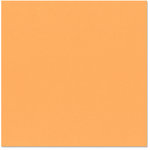 Bazzill Basics - 12 x 12 Cardstock - Orange Peel Texture - Creamsicle