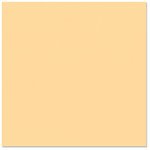 Bazzill Basics - 12 x 12 Cardstock - Smooth Texture - Papaya Blast, CLEARANCE