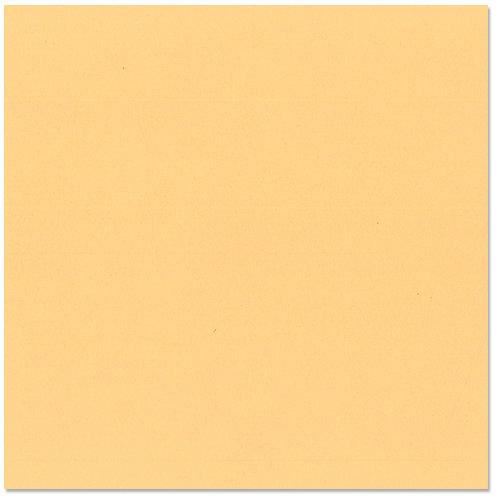 Bazzill Basics - 12 x 12 Cardstock - Grasscloth Texture - Citrus