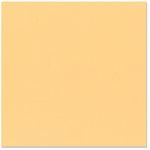 Bazzill - 12 x 12 Cardstock - Grasscloth Texture - Citrus