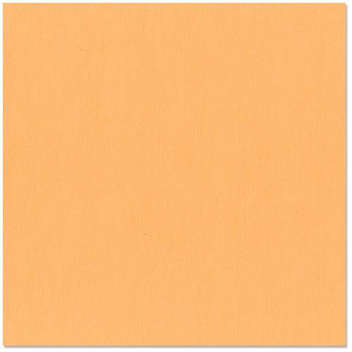 Bazzill - 12 x 12 Cardstock - Grasscloth Texture - Mango