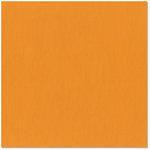 Bazzill - 12 x 12 Cardstock - Grasscloth Texture - Navel