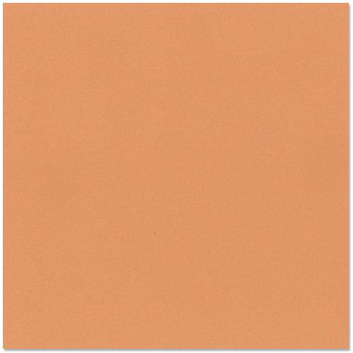 Bazzill Basics - 12 x 12 Cardstock - Canvas Texture - Cantaloupe
