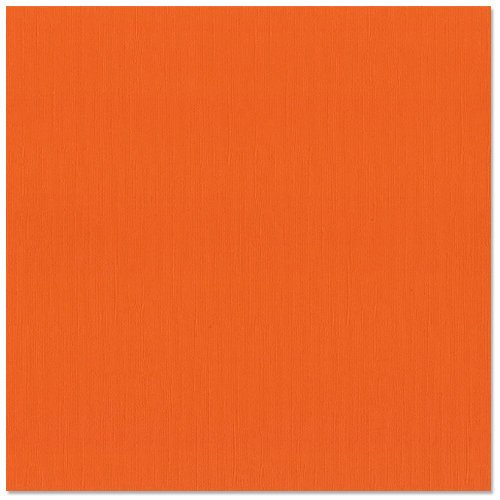 Bazzill Basics - 12 x 12 Cardstock - Canvas Texture - Orange