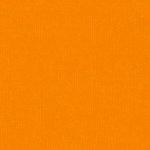 Bazzill Basics - 12 x 12 Cardstock - Grasscloth Texture - Carrot Cake