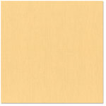 Bazzill Basics - 12 x 12 Cardstock - Canvas Texture - Harvest, CLEARANCE