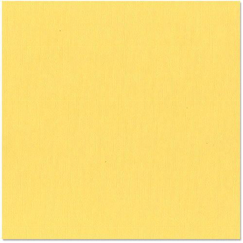 Bazzill - 12 x 12 Cardstock - Canvas Texture - Lemonade