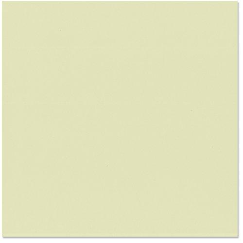 Bazzill Basics - 12 x 12 Cardstock - Canvas Texture - Aloe Vera