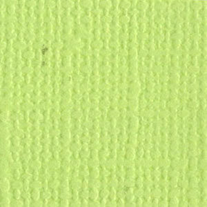 Bazzill Basics - Bulk Cardstock Pack - 25 Sheets - 12x12 - Limeade, CLEARANCE
