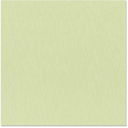 Bazzill Basics - 12 x 12 Cardstock - Grasscloth Texture - Spring Breeze