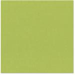 Bazzill - 12 x 12 Cardstock - Canvas Texture - Parakeet