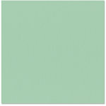 Bazzill - 12 x 12 Cardstock - Grasscloth Texture - Patina