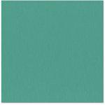 Bazzill - 12 x 12 Cardstock - Grasscloth Texture - Kachina