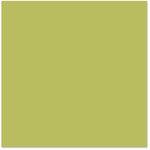 Bazzill - 12 x 12 Cardstock - Smooth Texture - Hummingbird