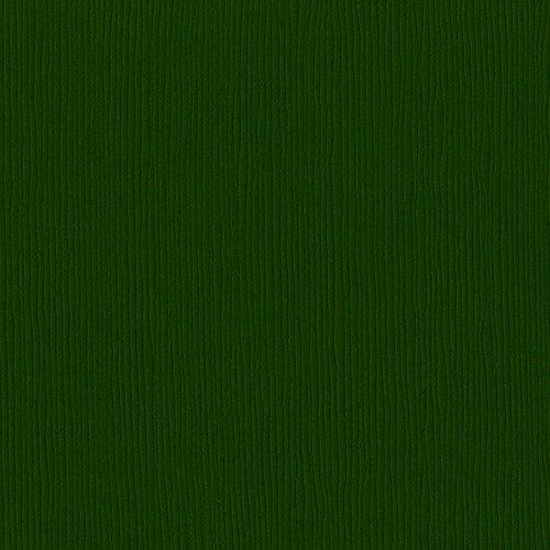 Bazzill Basics - 12 x 12 Cardstock - Grasscloth Texture - Avocado
