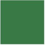 Bazzill Basics - 12 x 12 Cardstock - Smooth Texture - Shamrock