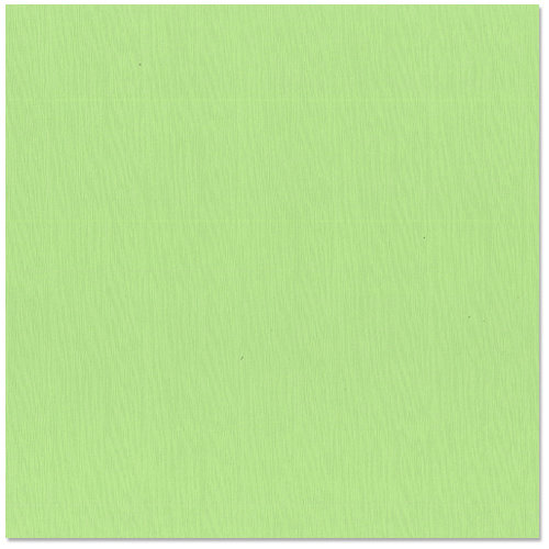 Bazzill - 12 x 12 Cardstock - Criss Cross Texture - Katydid