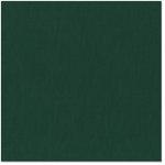 Bazzill - 12 x 12 Cardstock - Canvas Texture - Jade