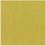 Bazzill Basics - 12 x 12 Cardstock - Canvas Texture - LilyPad, CLEARANCE