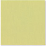 Bazzill - 12 x 12 Cardstock - Canvas Texture - Pear