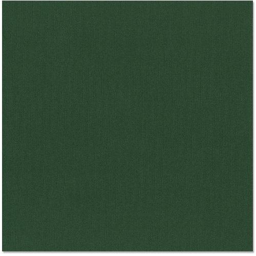 Bazzill - 12 x 12 Cardstock - Canvas Texture - Aspen
