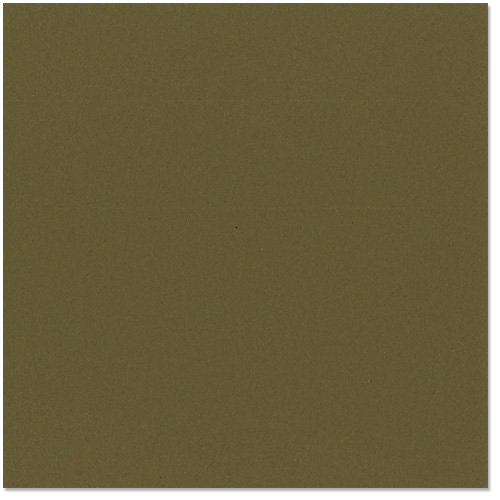 Bazzill - 12 x 12 Cardstock - Classic Texture - Olive