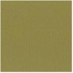 Bazzill - 12 x 12 Cardstock - Grasscloth Texture - Safari