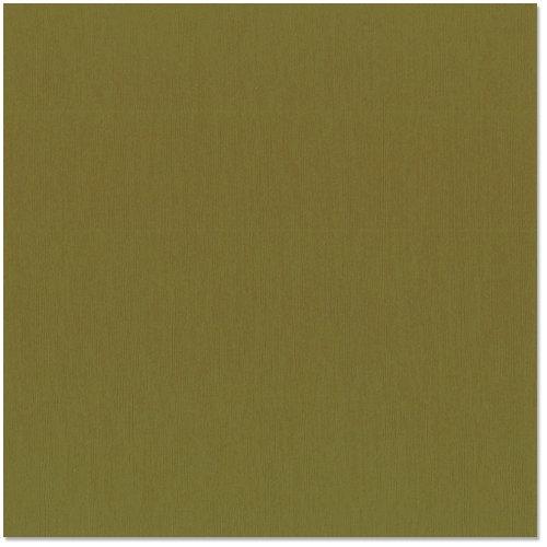 Bazzill - 12 x 12 Cardstock - Grasscloth Texture - Palo Verde