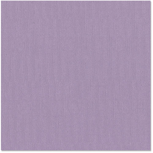 Bazzill - 12 x 12 Cardstock - Canvas Texture - Heather
