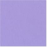 Bazzill - 12 x 12 Cardstock - Grasscloth Texture - Impatiens