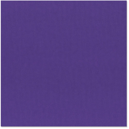 Bazzill - 12 x 12 Cardstock - Grasscloth Texture - Concord Grape