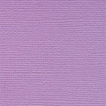 Bazzill Basics - Bulk Cardstock Pack - 25 Sheets - 12x12 - Snapdragon