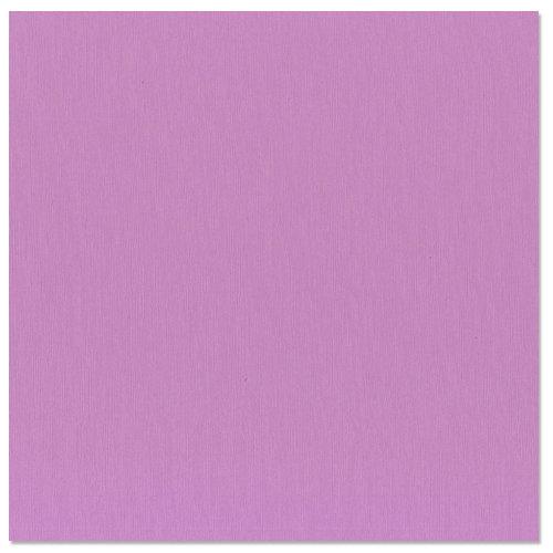 Bazzill - 12 x 12 Cardstock - Grasscloth Texture - Snapdragon