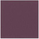 Bazzill Basics - 12 x 12 Cardstock - Canvas Texture - Sassy