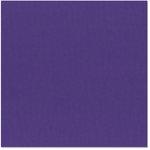Bazzill Basics - 12 x 12 Cardstock - Canvas Texture - Madrid