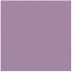 Bazzill Basics - 12 x 12 Cardstock - Canvas Texture - Brisbane, CLEARANCE