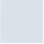 Bazzill Basics - 12 x 12 Cardstock - Orange Peel Texture - Kevin
